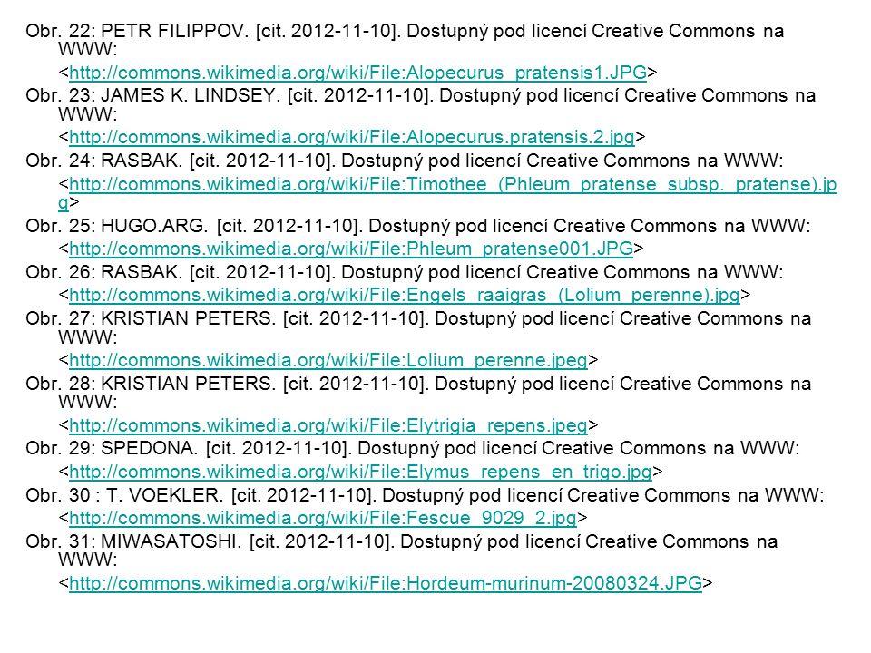 Obr. 22: PETR FILIPPOV. [cit. 2012-11-10]